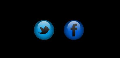 logo twitter 48x48